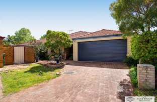 Picture of 27 Cheval Place, Canning Vale WA 6155