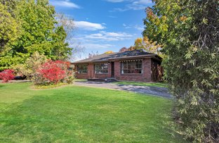 Picture of 3 Halinka Court, Bright VIC 3741