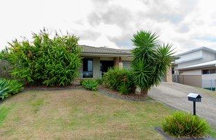Picture of 63 CORAL FERN CIRCUIT, Murwillumbah NSW 2484