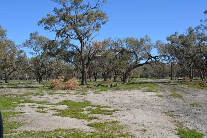 Picture of Lots 3, 4, 45, 46, 6 Pooncarie Menindee Road, POONCARIE NSW 2648