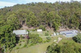 Picture of 2324 Armidale Road, Blaxlands Creek NSW 2460