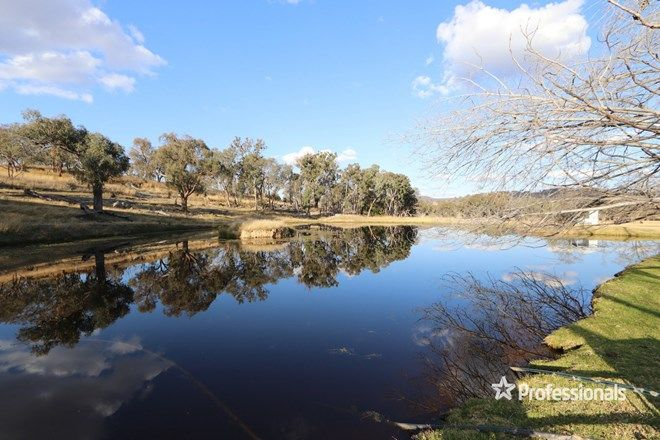 Picture of Raino 906 Grove Road, TINGHA NSW 2369
