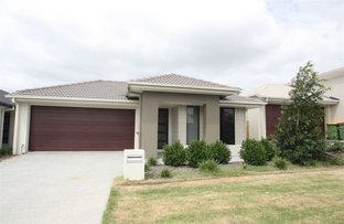 Picture of 41 Perger Street, Pimpama QLD 4209
