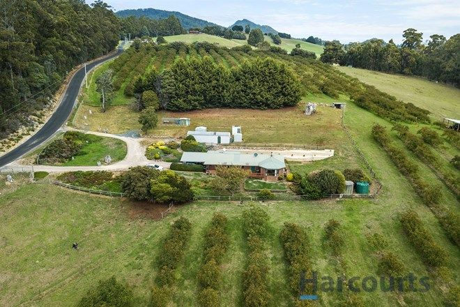 Picture of 666 Ironcliffe Road, PENGUIN TAS 7316