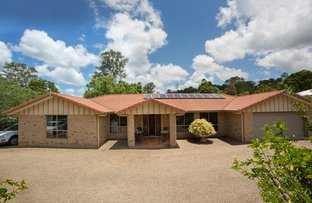 Picture of 49 BRAY ROAD, Mooloolah Valley QLD 4553