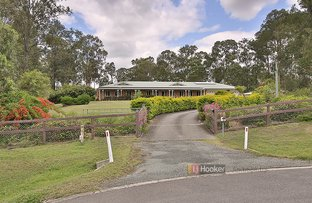 Picture of 26 Waratah Place, Cedar Vale QLD 4285