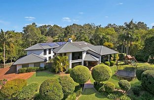 Picture of 52 Tristania Road, Chapel Hill QLD 4069