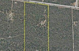 Picture of 373 Pine Ridge Road, Condamine Farms QLD 4357