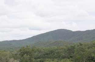 Picture of Cooktown QLD 4895