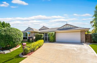 Picture of 7 Gibson Place, Brookfield QLD 4069