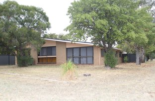 Picture of 8 Martin Street, Roma QLD 4455