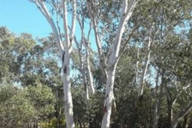 Picture of Lot 35 Moonie Highway, WESTMAR QLD 4422