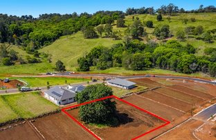 Picture of Lot 311 Eastwood Estate, Goonellabah NSW 2480