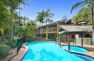 Picture of 218 Warrimoo  Avenue, St Ives NSW 2075