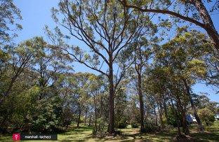 Picture of Lot 16, 104 Wallaga Lake Road, Bermagui NSW 2546