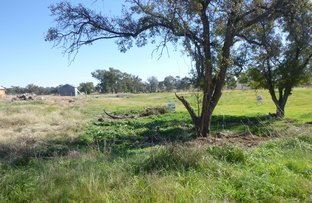 Picture of Lot 5 Griffith Street, Greenethorpe NSW 2809