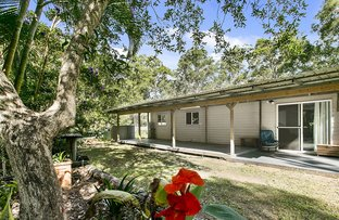 Picture of 12 Sarus Road, Carters Ridge QLD 4563