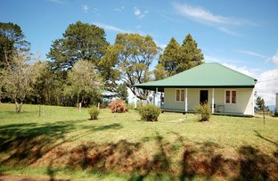 935 Whisky Creek Road, Dorrigo NSW 2453