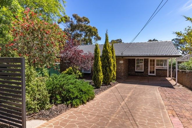Picture of 40 Gloucester Avenue, BELAIR SA 5052