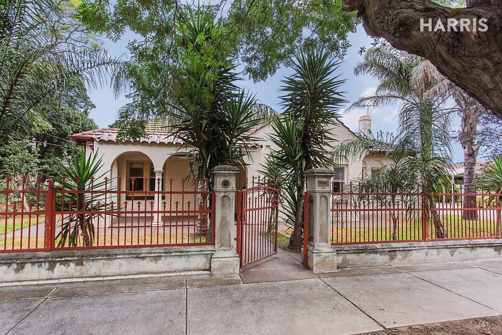 19 Tyson Street, Ashford SA 5035, Image 0