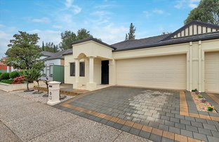 Picture of 12 Maple CCT, Mawson Lakes SA 5095