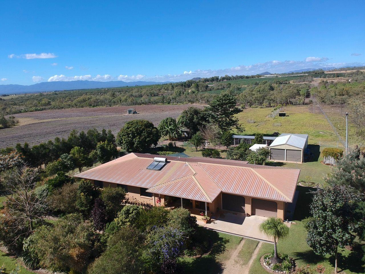 599 Springs Road, Mareeba QLD 4880, Image 2
