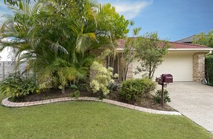 Picture of 19 Kalbarri Court, North Lakes QLD 4509