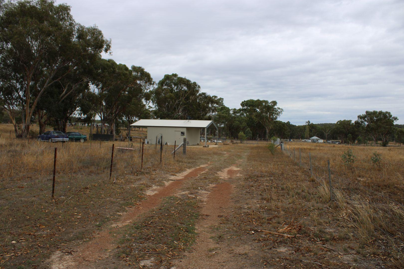 972 Barraba Road, Bundarra NSW 2359, Image 1