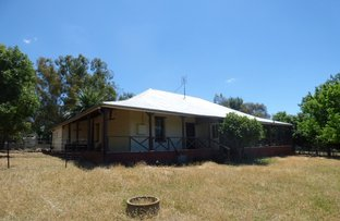 """Picture of """"Rosedawn""""/14  Noongal Road, Harden NSW 2587"""