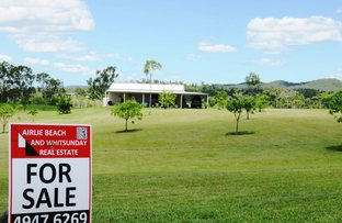 Picture of 522 MIDGE POINT RD, Bloomsbury QLD 4799