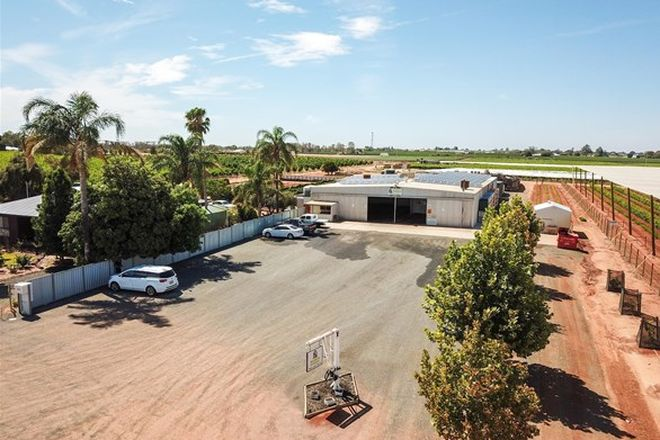 Picture of 123 Moonah Street, RED CLIFFS VIC 3496