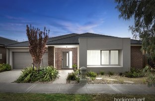 Picture of 11 Focal Road, Werribee VIC 3030