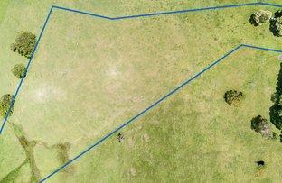 Picture of LOT 11 Binna Burra Road, Beechmont QLD 4211