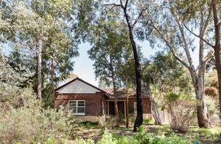 19 Cunningham Terrace, Daglish WA 6008