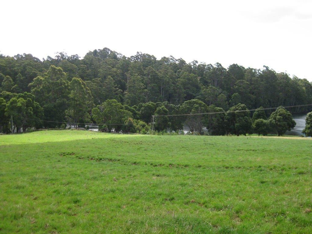 50 Lenna Road, East Ridgley TAS 7321, Image 2