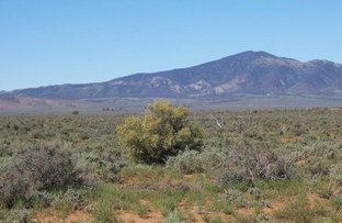 Picture of Lot 6 Wilmington Road, Stirling North SA 5710