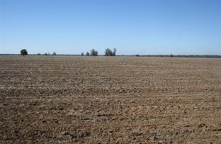 Picture of 'Yarran' Pilliga Road, Coonamble NSW 2829
