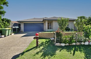 Picture of 6 BEAVER CRESCENT, Redbank Plains QLD 4301