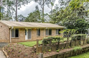 Picture of 3 Breezeway Court, Goodna QLD 4300