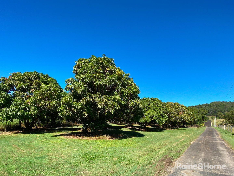 970 Cudgera Creek Road, Cudgera Creek NSW 2484, Image 2