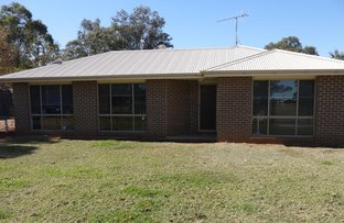 Picture of 243 TOMINGLEY ROAD, Narromine NSW 2821