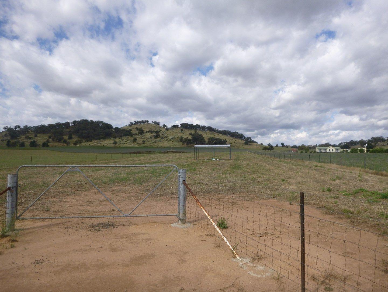 Lot 5 Canowindra Road, Cowra NSW 2794, Image 0