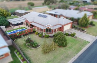 Picture of 19 Deakin Grove, Tongala VIC 3621