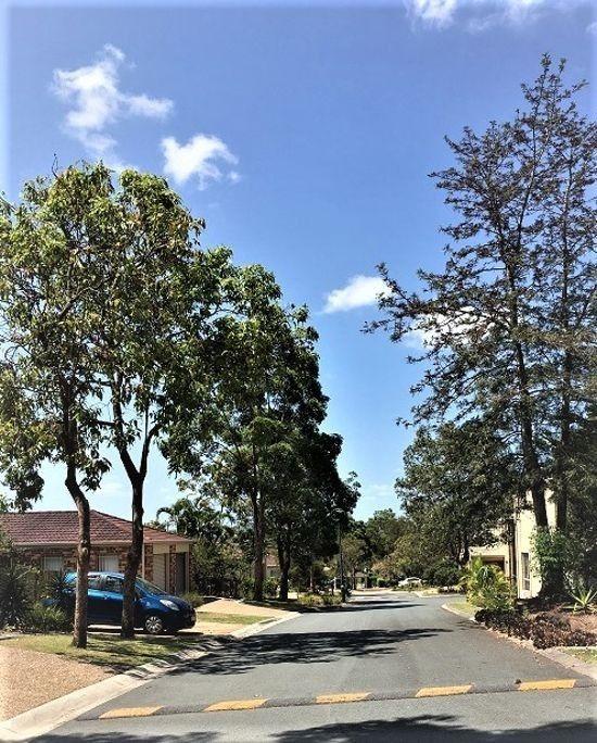 115 Gumtree street, Runcorn QLD 4113, Image 1