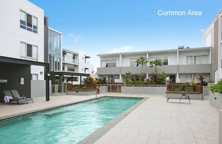Picture of 23/1 Oxford Street, Bulimba QLD 4171