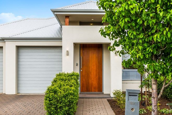 Picture of 35A North Street, HENLEY BEACH SA 5022