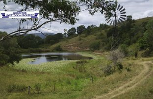 Picture of Sandy Creek QLD 4515