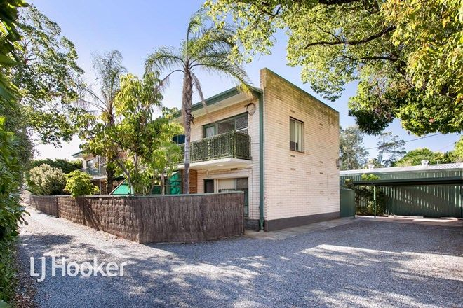 Picture of 1/4 Torrens Avenue, LOCKLEYS SA 5032