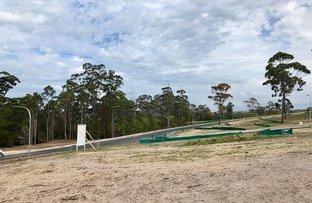 Picture of Lot 505 Lakewood Drive, Merimbula NSW 2548