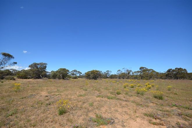 Picture of Section 3 Jim Jolly Road, SANDALWOOD SA 5309